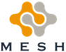 Mesh Technology Ltd